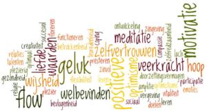 Positieve psychologie Ascender The Working Life Company - Psychologen voor WerkVitaliteit
