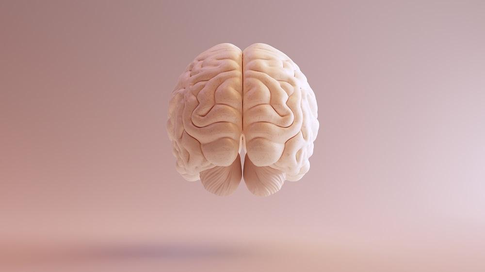 Brains Ascender The Working Life Company - Psychologen voor WerkVitaliteit